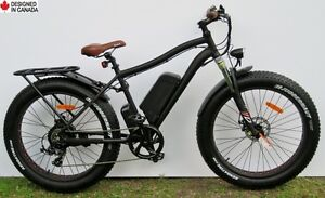 Fat Electric Bike, 48V/500W  - all-season & multi-terrain