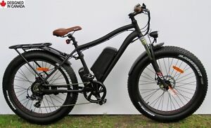 2017 Fat Electric Bike, 48V/500W  - all-season & multi-terrain