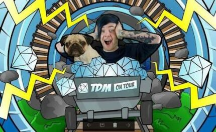 Wanted - 2 or 3 tickets to DanTDM in Sydney Monday 2/10