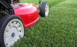 Lawn mowing service Green Valley Liverpool Area Preview