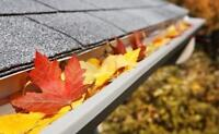 Eavestrough / Gutter Cleaning - Independent Professional