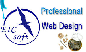 $174.50 for a Eicsoft Economy Web Design Package (50% off)