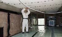 Asbestos and Mold Removal