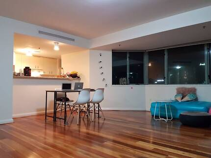 URGENT: Room available for a male/female in Sydney CBD