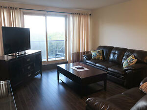 Furnished Two Bedroom Condo Style Suite off Larry Uteck