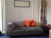 Great West Elm Sofa