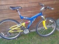 "Raleigh 26"" mountain bike"