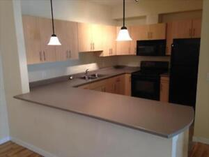 Modern attractive 1Bdrm suites at Lake Country Lofts!