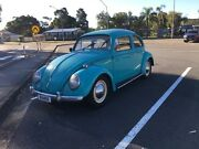 1958 Volkswagen Beetle Benowa Gold Coast City Preview