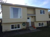 1-2 bedroom shared house for rent