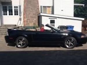 2001 Ford Mustang Tout équipé Autre