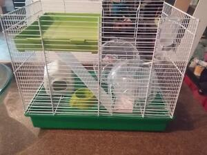 hamster cage. only used 1 month plus clear exercise ball.