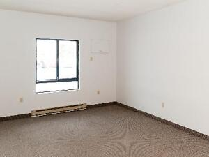 Clean and quiet one bedroom available for December Kitchener / Waterloo Kitchener Area image 3