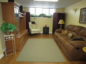 SPACIOUS BRIGHT FURNISHED ONE BEDROOM APARTMENT