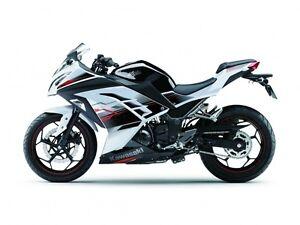 2014 Kawasaki Ninja 300 SE