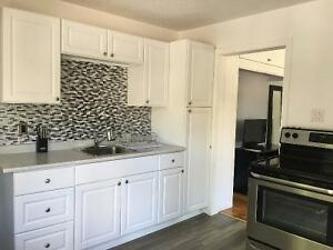 WESTBORO!Beautiful newly renovated and furnished 1 bedroom unit