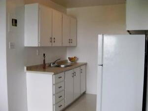 Avon Place Apartments- Available DEC 1 Stratford Kitchener Area image 6