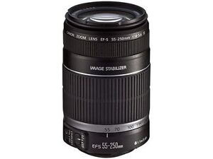 Canon EF-S 55-250mm f/4-5.6 IS STM Telephoto Lens..