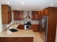 Build/Renovate your NEW Kitchen best$ and 5 year warenty
