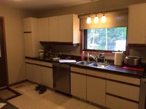 European cabinets with countertops