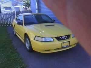 1999 Ford Mustang Coupe (2 door) $4500 obo