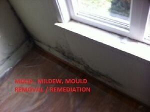 Mildew,  mold, asbestos, toxic, bad smell inside house?
