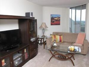 Great 2 bedroom apartment for rent London Ontario image 8