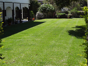 Competitive Lawn Mowing Services Glenfield Campbelltown Area Preview