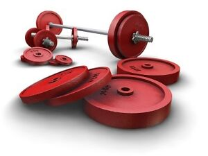 Wanted weight lifting equipment