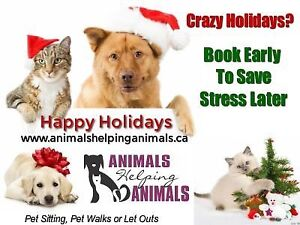 Available Pet Sitter For The Holidays