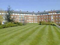 room to rent in apartment in St James Park