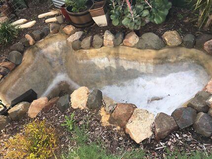 Garden clear pond