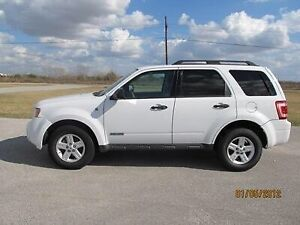 Looking for a Ford Escape