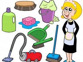Housekeeper /home help