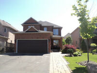 MUST SEE 1 Bdrm, Bsmt Apt. in Bolton, ON $975.00 - All Included.