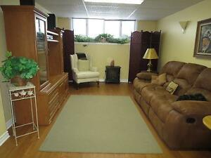 BRIGHT SPACIOUS FURNISHED ONE BEDROOM APARTMENT Kingston Kingston Area image 1