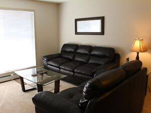 2 Bedroom 2 Bath Furnished Condo in Clareview Business Park