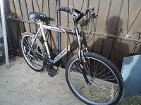 MISSING / STOLEN Phoenix Probike Mens Bike