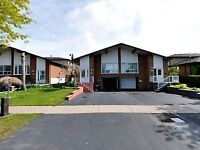 4+1 Bdrms, 3 Wshrms, Basement Apartment ~ Brandon Gate/Darcel