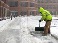 2 Sidewalk Crews needed to start asap.
