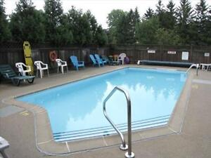 Great 2 bedroom apartment for rent London Ontario image 11