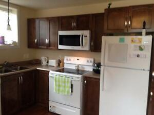 Beautiful, large 2-bdrm in St Philip.