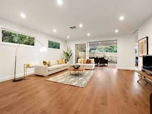 ANP Painting & Decorating Services Nunawading Whitehorse Area Preview