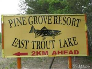 Pine Grove Resort, East Trout Lake