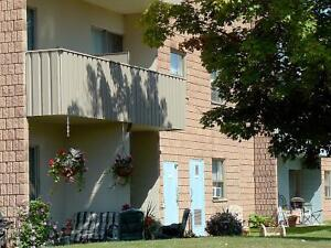 1 BR Available for rent in Stratford, ON Stratford Kitchener Area image 2