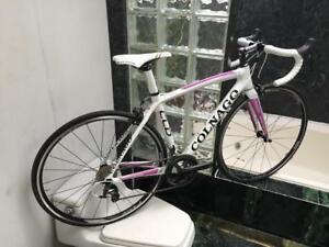 BRAND NEW (ALL SIZES) COLNAGO CLD ULTEGRA WOMENS ROAD BIKE - CARBON