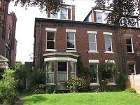 Spacious 2 bed 1st floor flat in leafy street in Ashbrooke, newly decorated