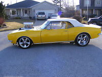 BLOWN PROTOURING BEAST