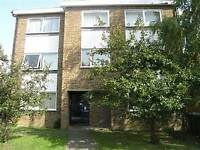 Two Bedroon Apartment - Close To Wimbledon High St