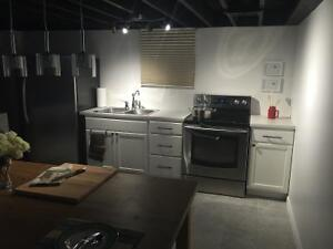 All-inclusive, furnished basement rental in south Windsor